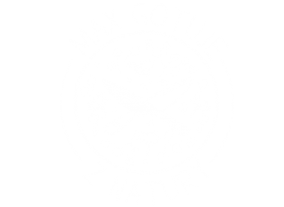 Max Gotuje z Natury